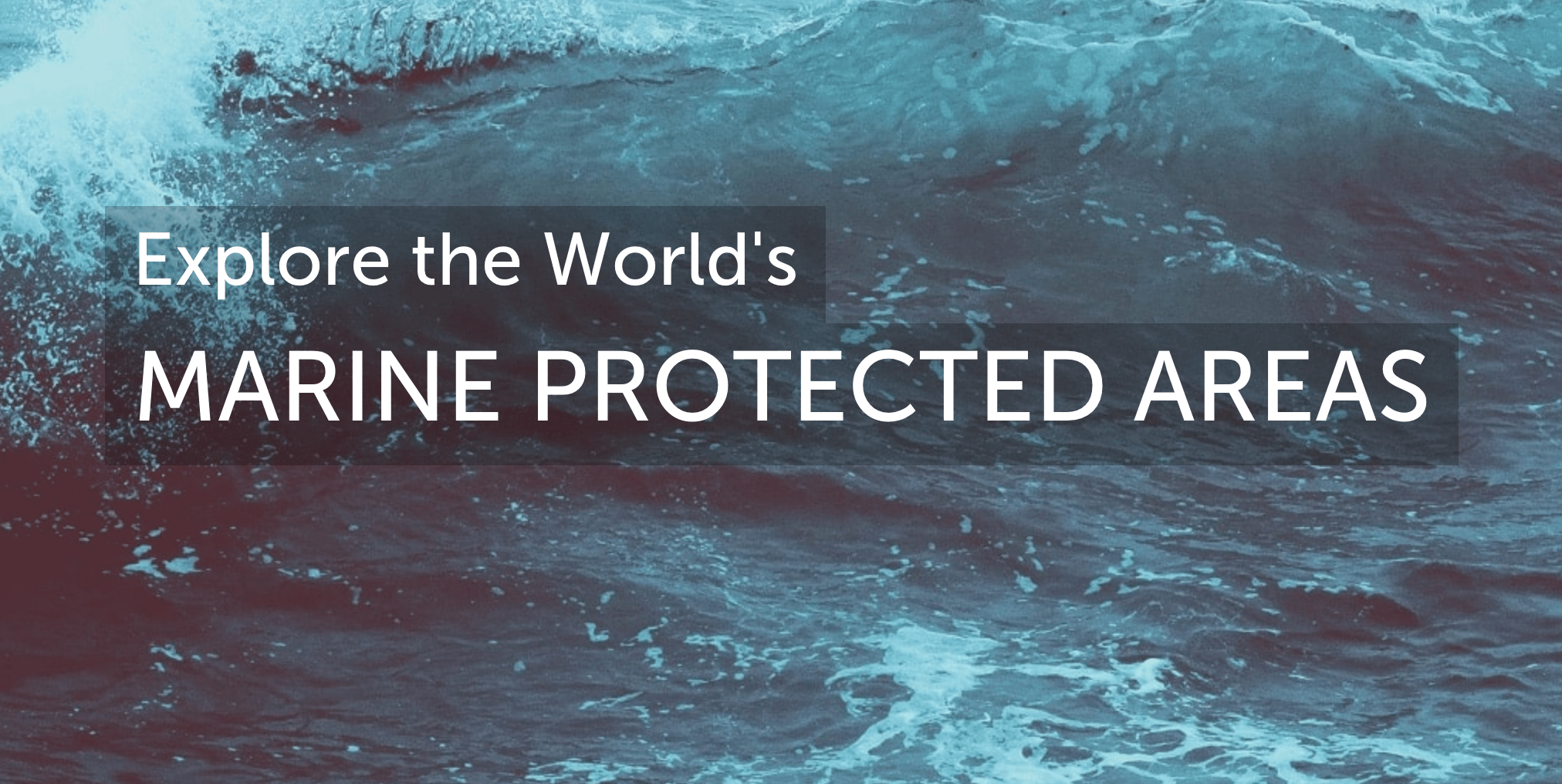 Explore the World's Marine Protected Areas
